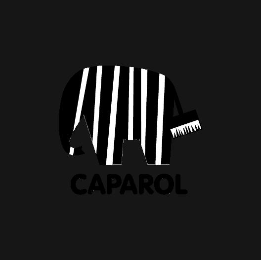 8_Caparol_Grau_RGB
